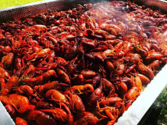 How to eat crawfish Louisiana style?