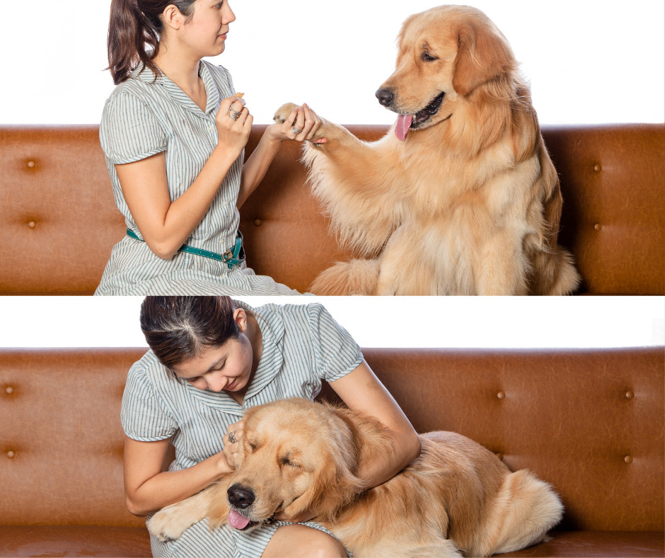 training your dog to smile